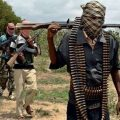 About seven farmers have been killed by suspected herdsmen in some, Conquest Online Magazine