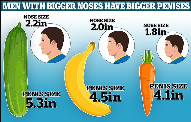 A scientific study has found that men with larger noses do have longer penises, Conquest Online Magazine